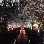 神奈川に近い町から離れられない